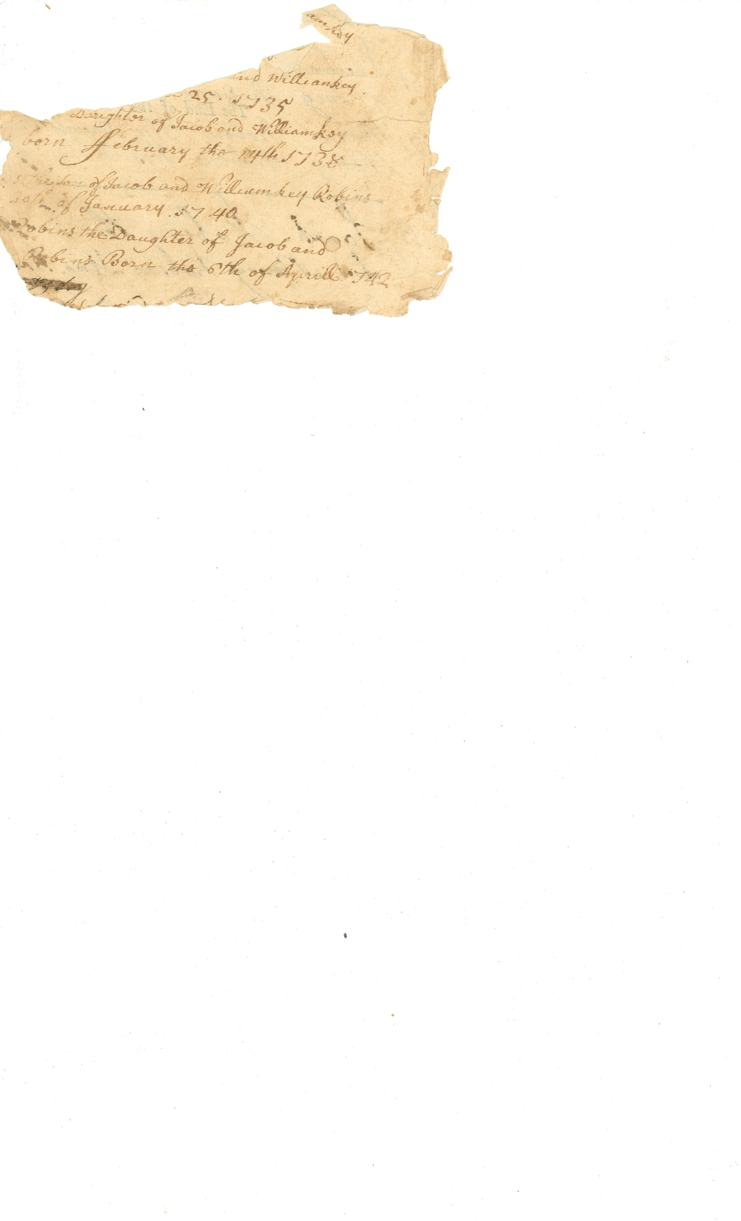 image of Robins Family Record, fragment 2